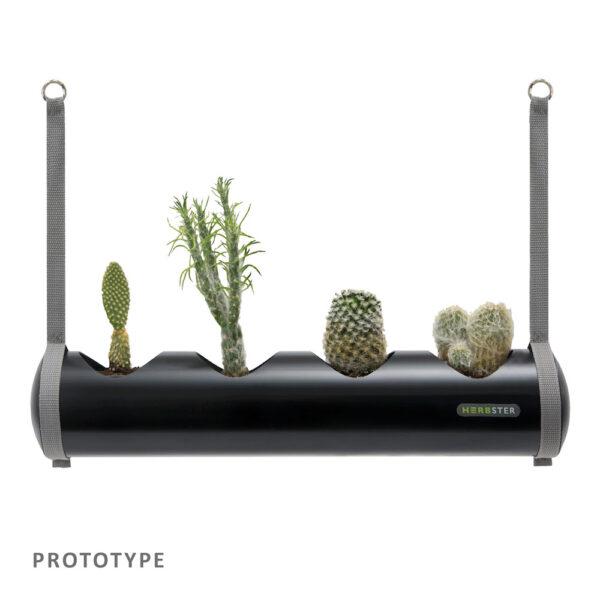 Herbster Tube sort black med kaktus