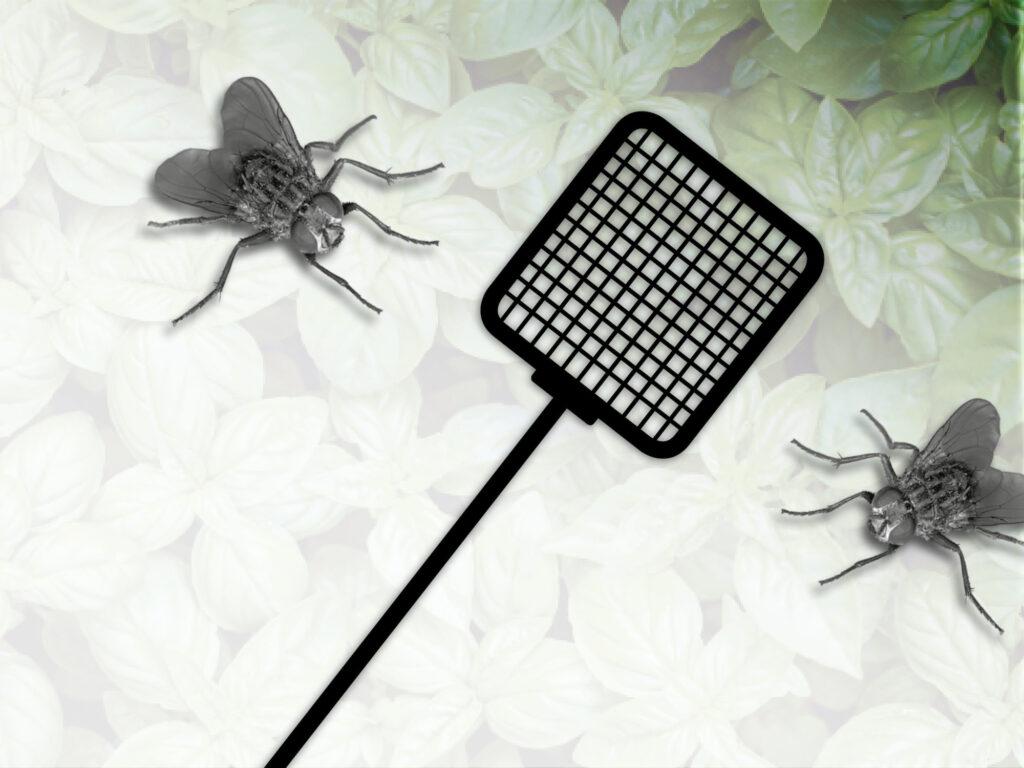 Slip af med fluer i potteplanten