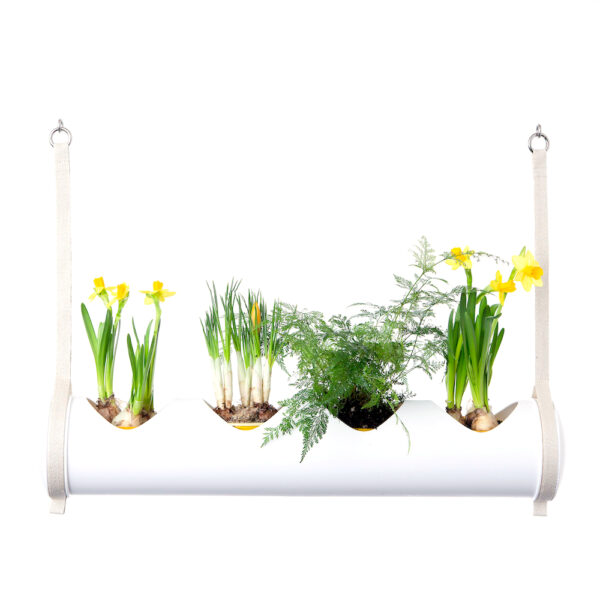 herbster tube white easter
