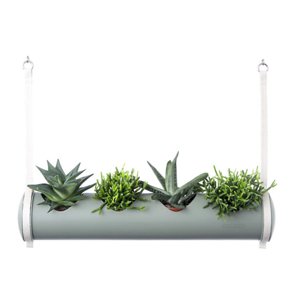 herbster tube botanic green with succulents